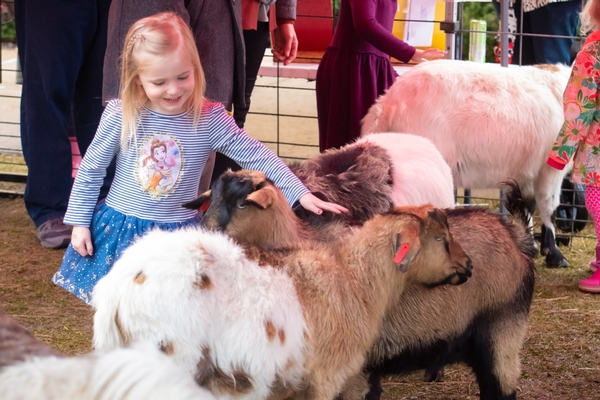 Toddler petting animals at EasterFest